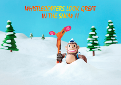 Whistlecopter Look Great In The Snow