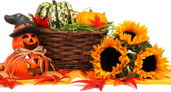 pumpkin, basket and flowers