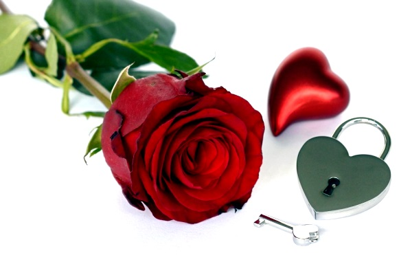 Roses and Locket