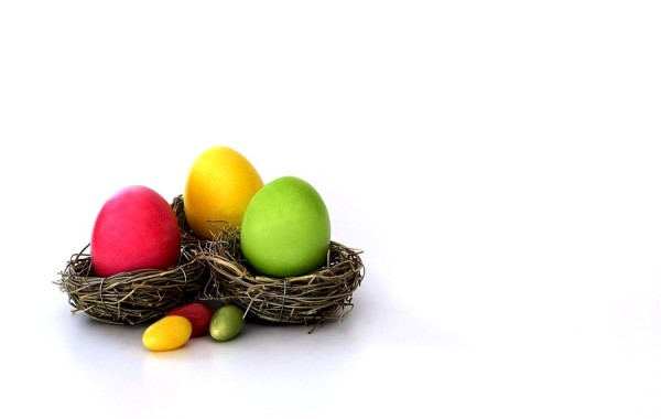 Easter Egg Nest