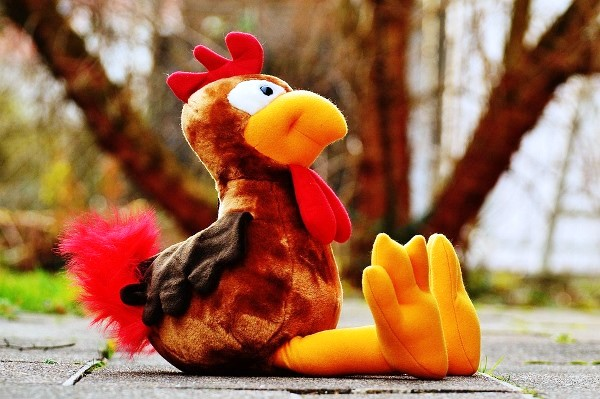Cute Stuffed Turkey